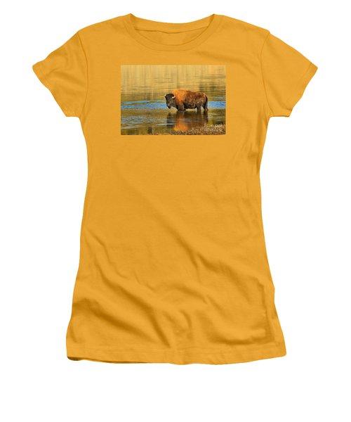 Women's T-Shirt (Junior Cut) featuring the photograph Preparing To Swim The Yellowstone by Adam Jewell