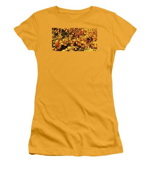 Prickly Moses Women's T-Shirt (Junior Cut) by Cassandra Buckley