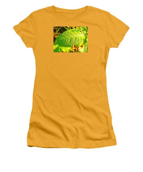 Rain On Leaf Women's T-Shirt (Junior Cut) by Craig Walters