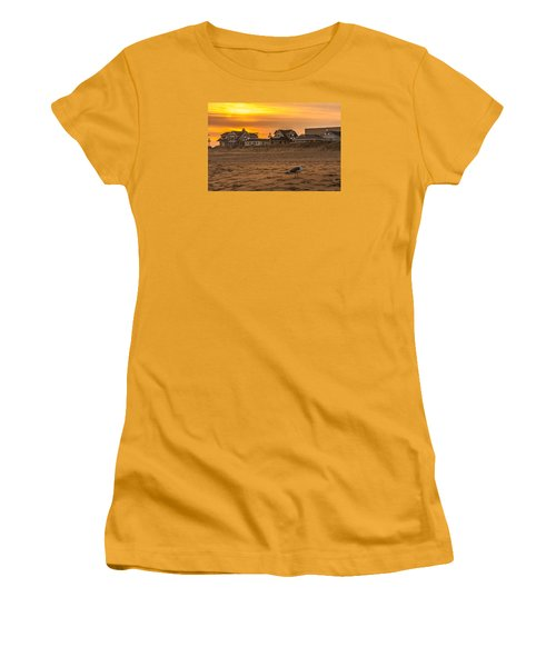 Seagull At Sunset Women's T-Shirt (Athletic Fit)