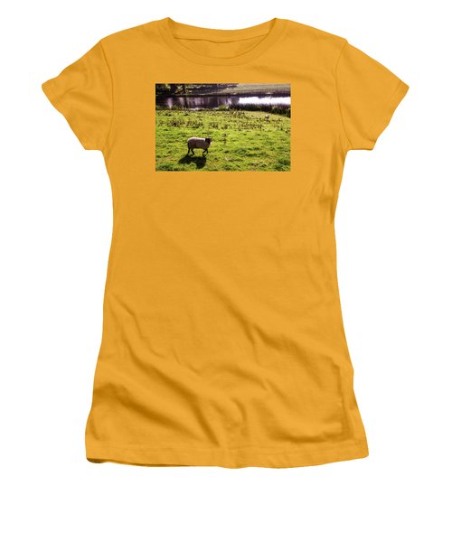 Sheep In Eniskillen Women's T-Shirt (Athletic Fit)