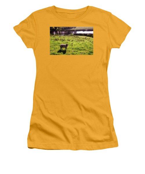 Sheep In Eniskillen Women's T-Shirt (Athletic Fit)