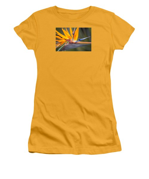 Women's T-Shirt (Athletic Fit) featuring the photograph Shocktop by Julie Andel