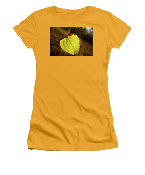 Single Greenbrair Leaf In Evening Sun Women's T-Shirt (Athletic Fit)