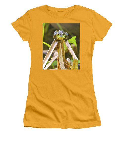 Sitting On Top Of The World Women's T-Shirt (Junior Cut) by Debbie Stahre