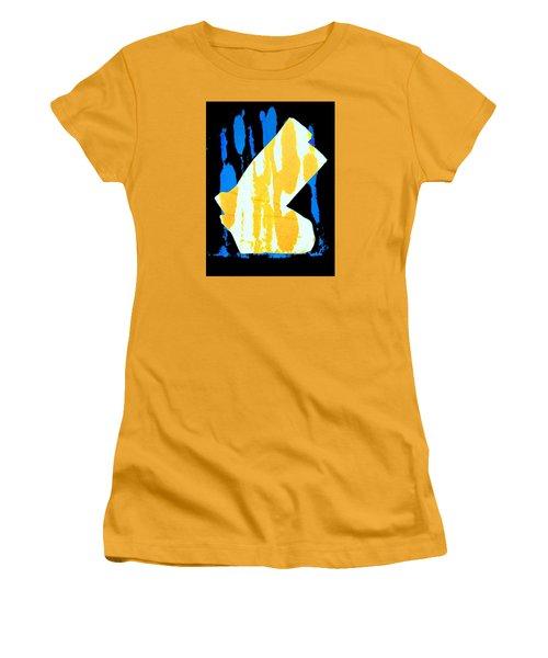 Socks Women's T-Shirt (Junior Cut) by Bob Pardue
