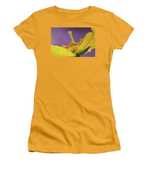 St Johns Wort Flower Women's T-Shirt (Athletic Fit)