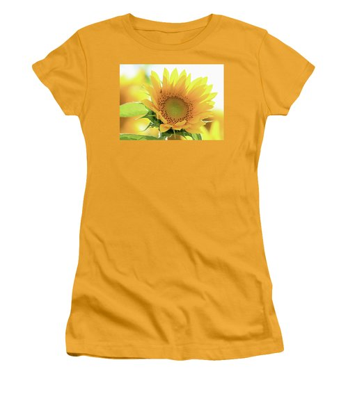 Sunflower In Golden Glow Women's T-Shirt (Athletic Fit)