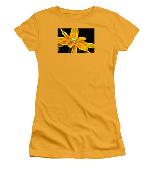 Sunrise Daisy Women's T-Shirt (Junior Cut) by Cameron Wood