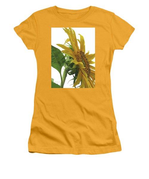 Sunshine In The Garden 25 Women's T-Shirt (Junior Cut) by Brooks Garten Hauschild