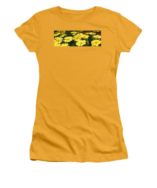 Waves Of Yellow Daisies Women's T-Shirt (Athletic Fit)