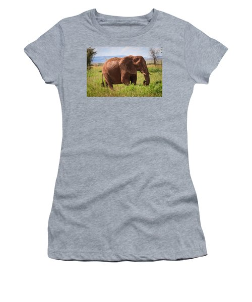 African Desert Elephant Women's T-Shirt (Athletic Fit)