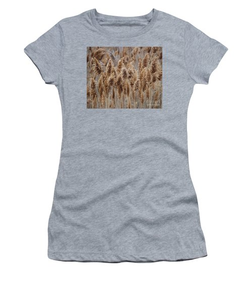 Wind Blown Redish Brown Plants Women's T-Shirt (Athletic Fit)