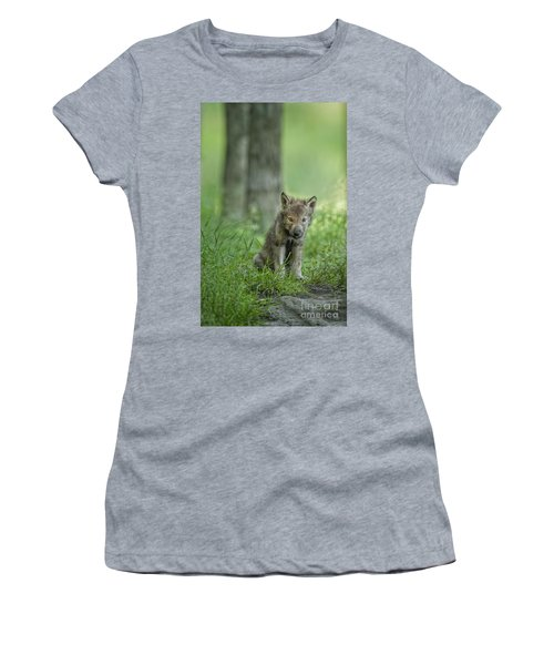 Timber Wolf Pup Women's T-Shirt