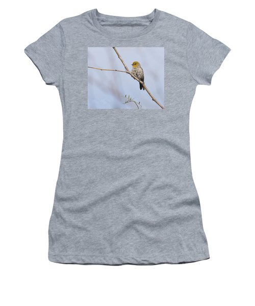 Verdin Women's T-Shirt