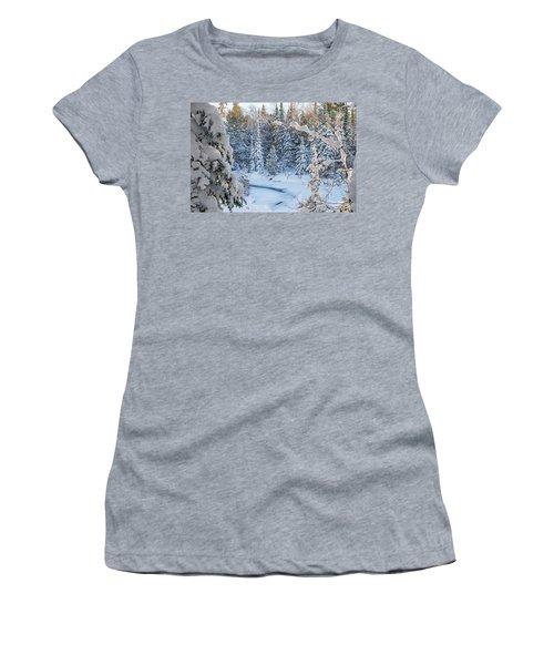 Winter At Grand Marais Creek Women's T-Shirt