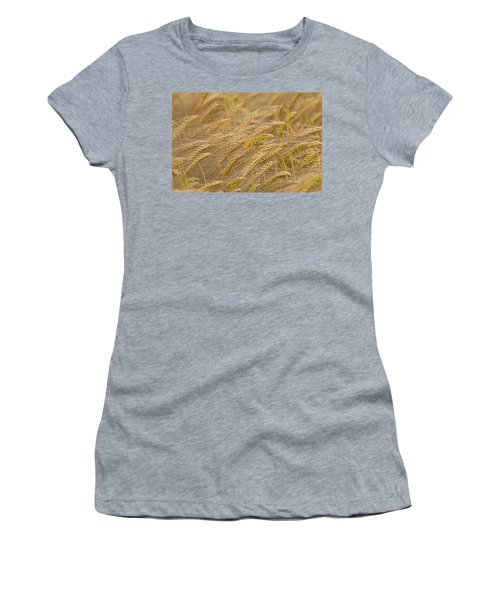 Women's T-Shirt (Junior Cut) featuring the photograph 130109p155 by Arterra Picture Library