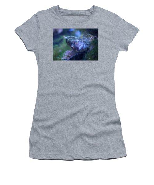 Women's T-Shirt (Junior Cut) featuring the photograph Redspotted Hawkfish  by Savannah Gibbs