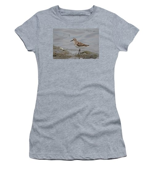Women's T-Shirt (Junior Cut) featuring the photograph Semipalmated Sandpiper by James Petersen