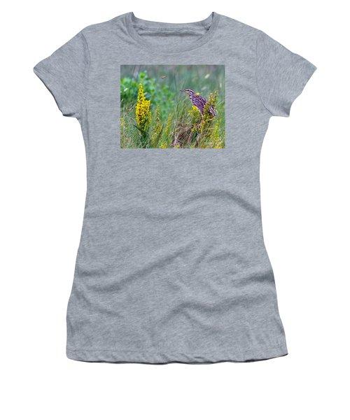A Golden Opportunity Women's T-Shirt (Junior Cut) by Gary Holmes