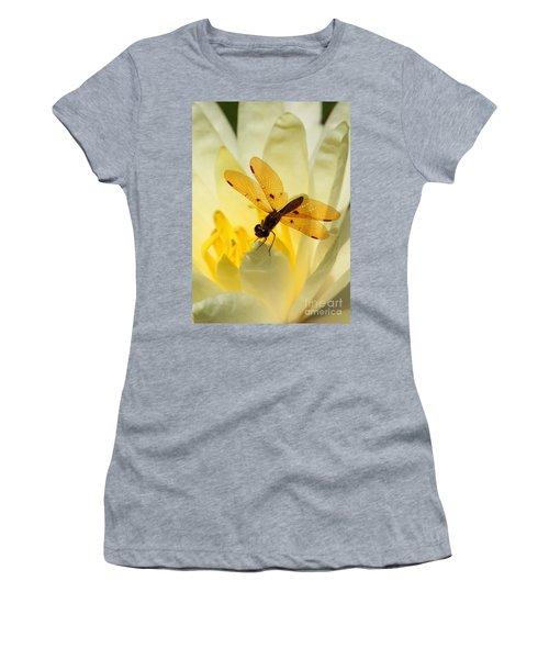 Amber Dragonfly Dancer Women's T-Shirt