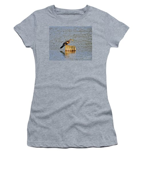 American Anhinga Angler Women's T-Shirt (Athletic Fit)
