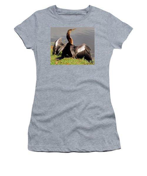 Anhinga Anhinga Anhinga Drying Plumage Women's T-Shirt (Athletic Fit)