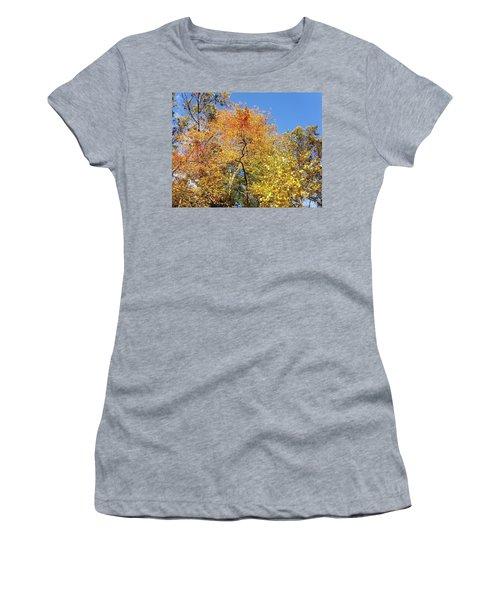 Women's T-Shirt (Junior Cut) featuring the photograph Autumn Limbs by Jason Williamson