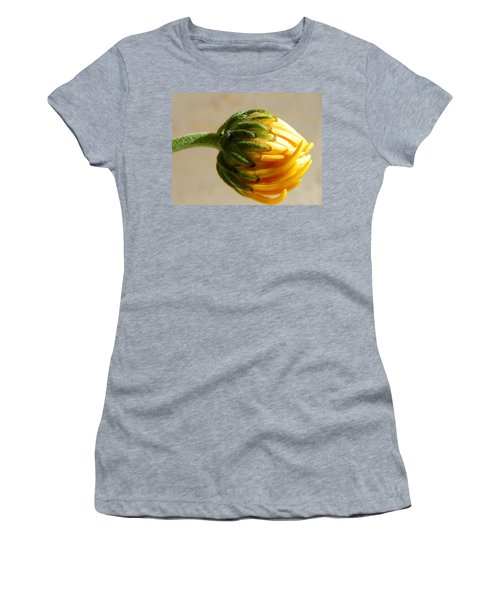 Women's T-Shirt (Junior Cut) featuring the photograph Baby Spider Mum by Deb Halloran