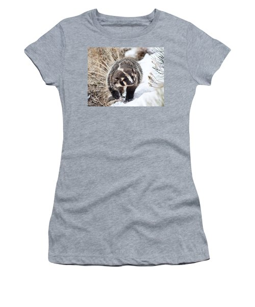 Badger In The Snow Women's T-Shirt (Athletic Fit)