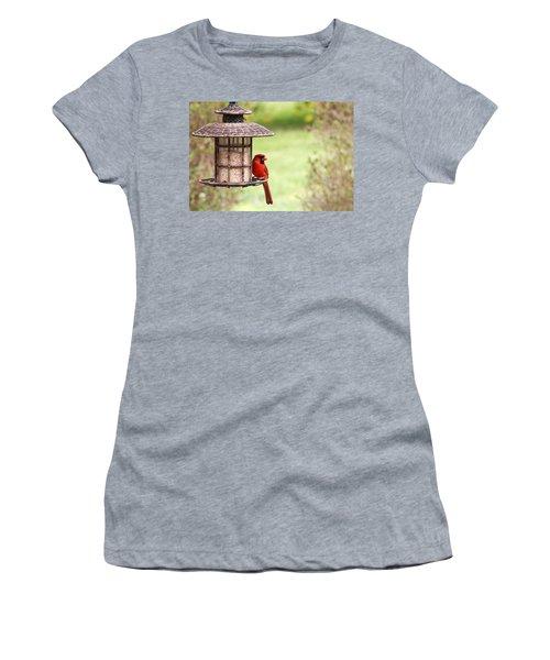 Women's T-Shirt (Junior Cut) featuring the photograph Beautiful Cardinal by Trina  Ansel