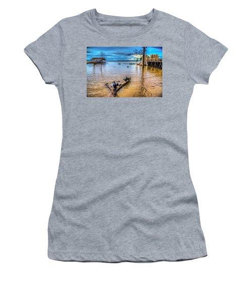 Birds On Log Women's T-Shirt (Athletic Fit)