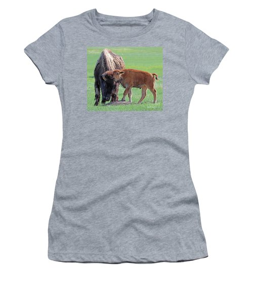 Bison With Young Calf Women's T-Shirt