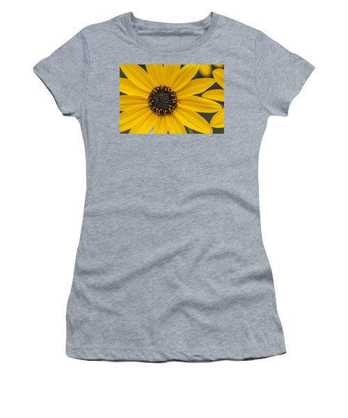 Black-eyed Susan Women's T-Shirt