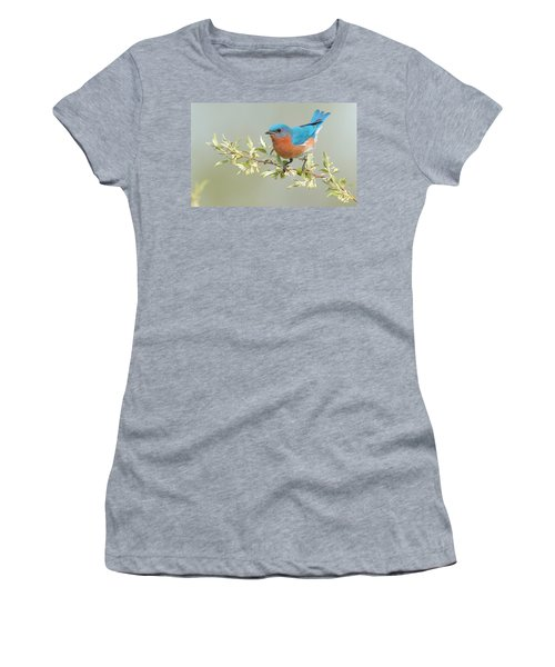 Bluebird Floral Women's T-Shirt (Athletic Fit)