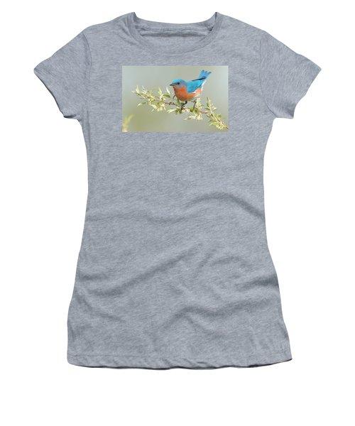 Bluebird Floral Women's T-Shirt