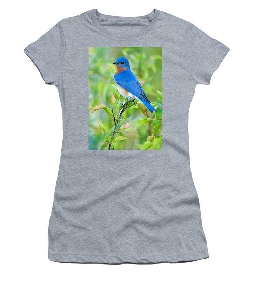 Bluebird Joy Women's T-Shirt