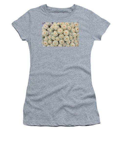 Cactus 35 Women's T-Shirt (Athletic Fit)