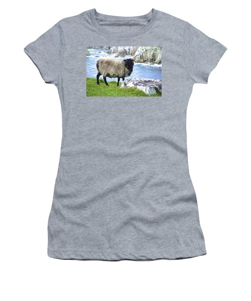 Clew Bay Sheep Women's T-Shirt