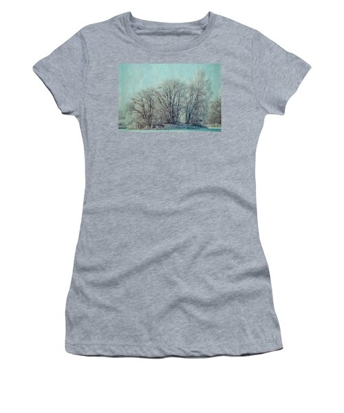 Cold Winter Day Women's T-Shirt