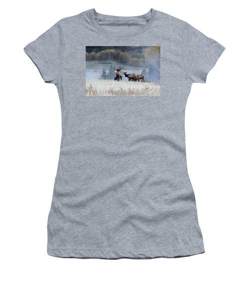 Cool Misty Morning Women's T-Shirt