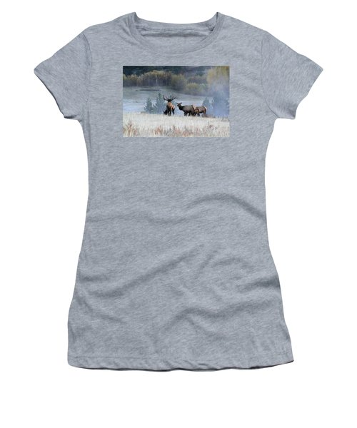 Cool Misty Morning Women's T-Shirt
