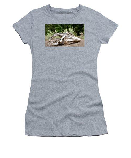 Cranial Drift Women's T-Shirt