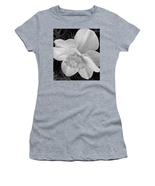 Daffodil Study Women's T-Shirt