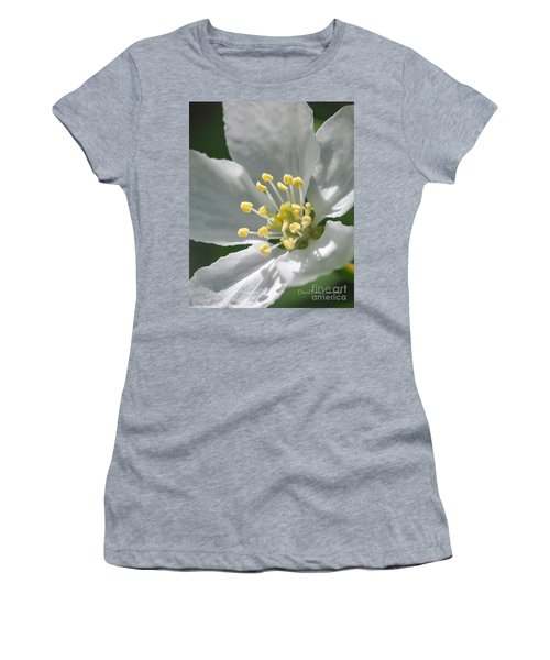 Delcate Widflower With Beautiful Stamen Women's T-Shirt (Athletic Fit)