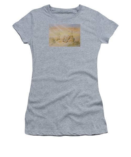 Deschutes Canyon Women's T-Shirt (Junior Cut) by Richard Faulkner