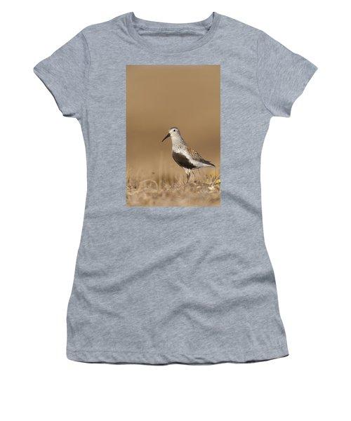 Dunlin Standing On Tundra Of Arctic Women's T-Shirt