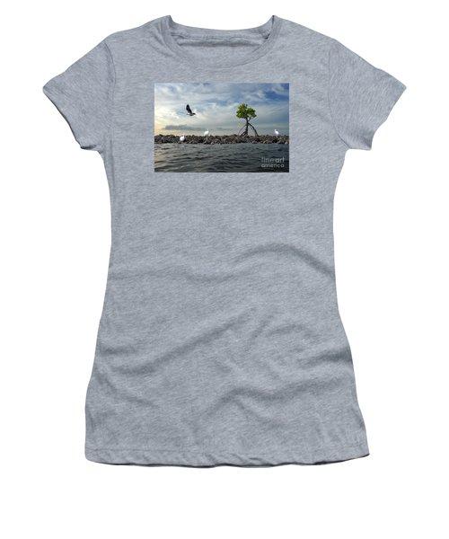 Women's T-Shirt (Junior Cut) featuring the photograph Everglade Scene by Dan Friend