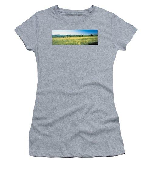 Field Near Barnstaple, North Devon Women's T-Shirt