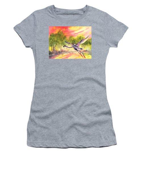Flamingo In Alcazar De San Juan Women's T-Shirt
